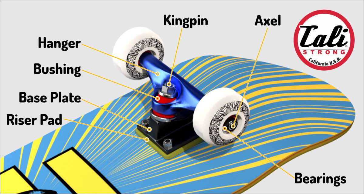Skateboard Truck Part Diagram