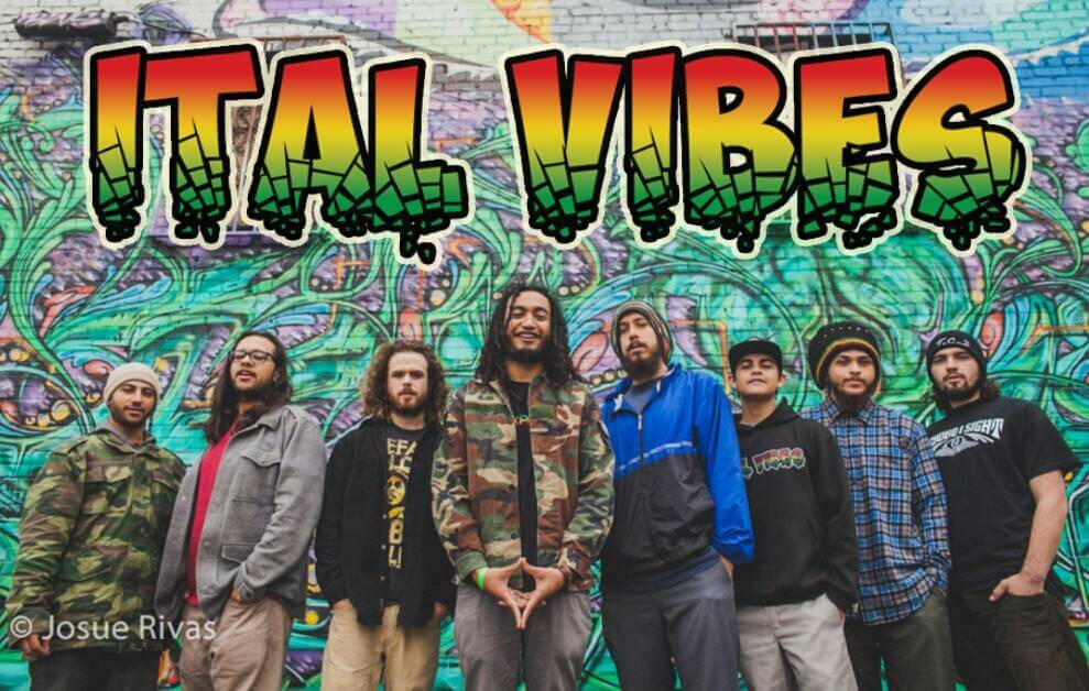 Ital Vibes Members: Kennedy...Lead Vocals Jeremy 'Levi Dozier' Kary...Vocals Marc...Keys Aaron...Drums Andy...Guitar Evan...Bass Jacob...Percussion Justin...Keys