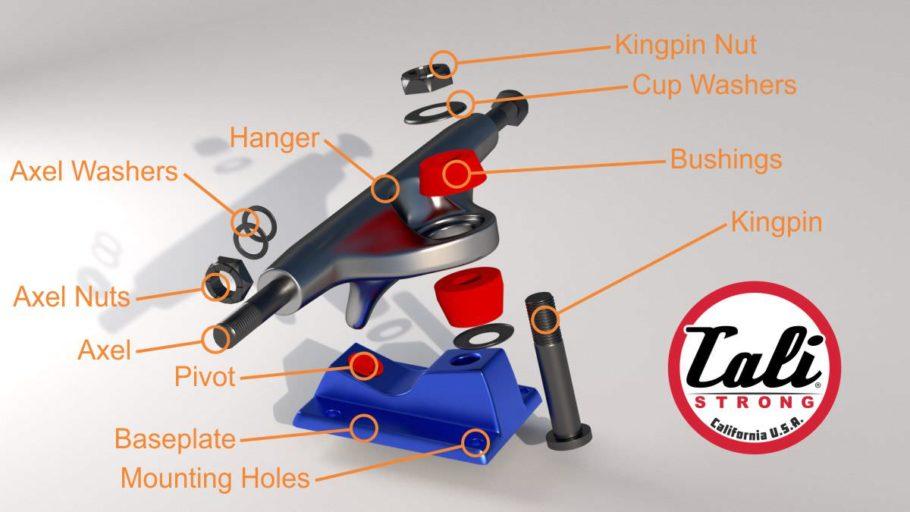 skateboard truck parts diagram cali strong skateboarding rh cali strong com Skateboard Parts Names Skateboard Wheels Diagram